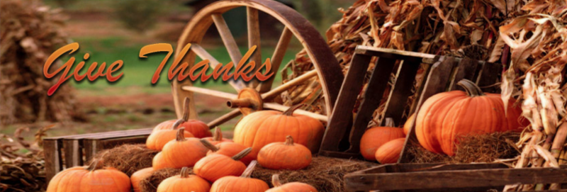 Give Thanks banner image of pumpkins.